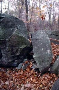 Fig. 12. Short stone row between boulders ('C'), from N. Row-Linked Boulder site, South Ridge, Oley Hills, PA.