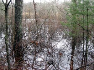 The Pawcatuck River expands into its flood plain