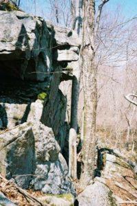 High Cliff Cougar